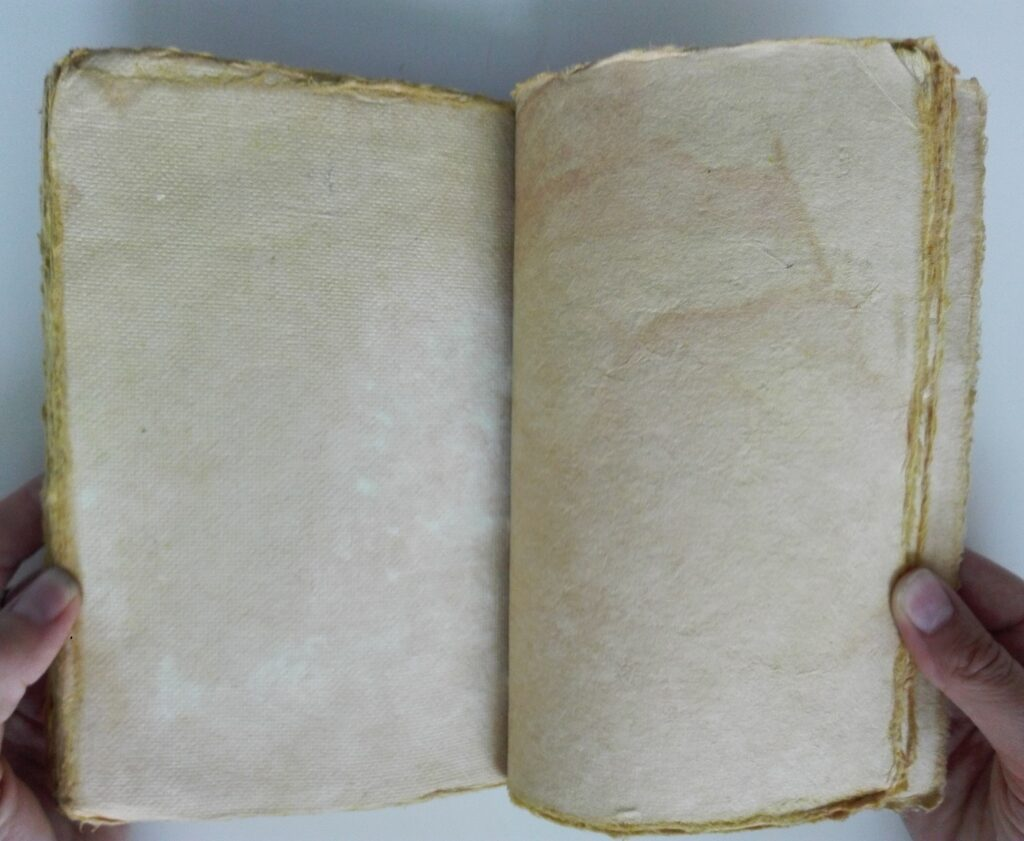 Notes pocházející z Malajsie, vyrobený z papyrusu tradiční technikou.